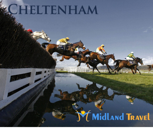 Cheltenham 2020 - 4 Day (Thurs & Fri)