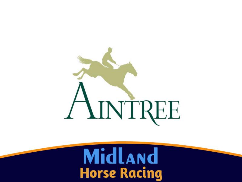 Aintree Grand National 2021