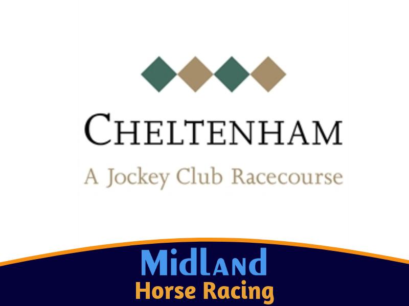 Cheltenham Custom Made Package